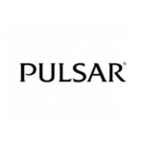 Pasek do zegarka Pulsar 70P8JG / Y182 6d40 Stal Stal